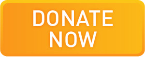 Donate-now-button-300x118